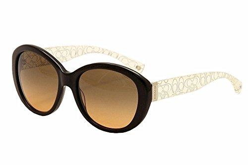 Coach HC8106 L083 Sunglasses Gradient