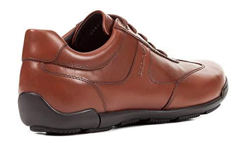 de mínimo U843BC Cognac con de de Zapato Geox Deporte Exterior Cordones Ocio Zapatilla Deportivo Negocios varón Calzado EDGWARE de Calzado y Hombre Zapatillas Calle Casual de Calzado 5IOx5SqF0w