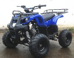 High Power Youth CMS 110CC ATV -Utility ATV - Fully Automatic w/ REVERSE! ( 125 (Youth Atv)