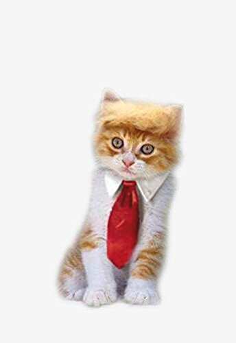 Cat Dog Costumes Halloween (Trump Style Pet Costume Cat Wig, Donald Dog Clothes with Collar & Tie Head Wear Apparel Toy for Halloween, Christmas, parties, festivals by FMJI)