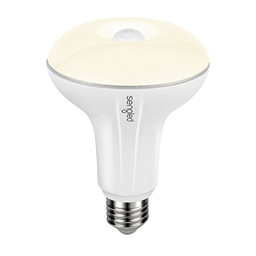 Motion Sensor Flood Light Socket