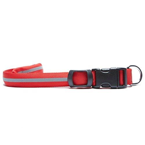 N IZE Nite Dawg Red Collar Lg