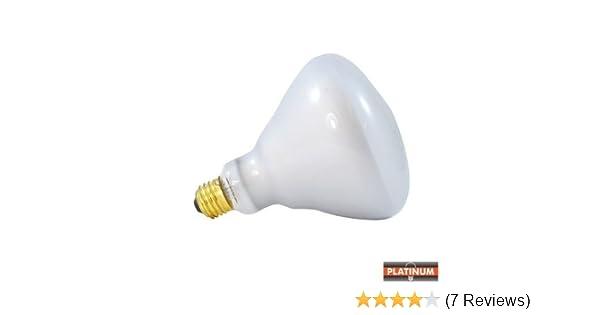Sylvania Br40 75 Watt Flood Light Bulb 12 Peaces Day Light Incandescent Bulbs Amazon Com