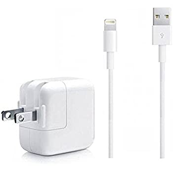 Amazon Com Targus Dual Charger For Apple Ipad Ipad 2