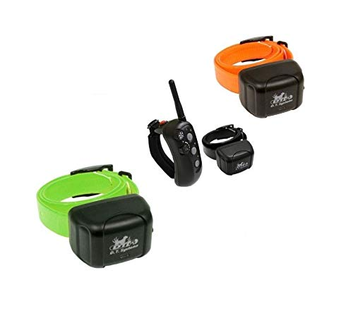 DT Systems Rapt 1400 Training System + 2 Extra Rapt 1400 Training Collars (Green&Orange) by DT Systems