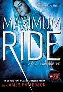 Download Maximum Ride - Angel Experiment (07) by Patterson, James [Paperback (2007)] pdf