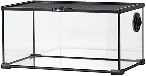 Hábitat de reptiles para decoración Caja de ciencias de vivienda de anfibio, tanque de serpiente de lagarto - reloj caja de transporte jaula hábitat tanque de tanques casero tienda de tienda de mascot