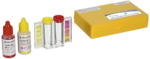 Pentair R151196 756 2 n 1 Bromine Test Kit