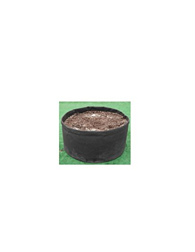 RootEase Container Treatment Eco Friendly 9 5X14X14 product image