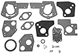Carburetor Overhaul Kit For Briggs & Stratton Part Number 495606, 494624. Kit Exceeds OEM Specs, Is Compatible With Up To 25% Ethanol In Fuel.