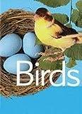 Birds, Paul McEvoy, 0791072800