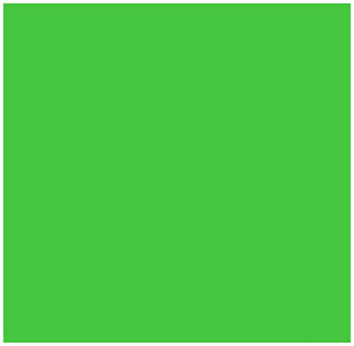 (Large Bandanas 27 x 27   Versatile Biker Rags   Classic Paisley Bandana Pattern - 2PK Solid Shock Green CA4200)