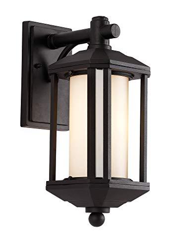 Trans Globe Lighting 40250 BK Outdoor Reveal 16.25