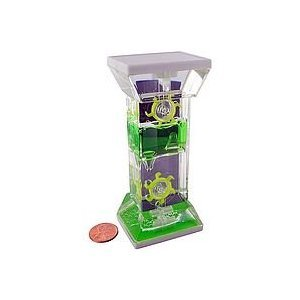 rhode island novelty water wheel timer toy (colors may vary)