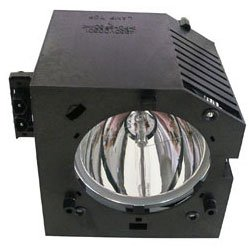 Electrified D42-LMP / 72620067 Replacement Lamp with Hous...