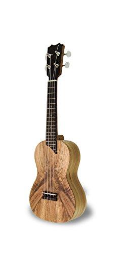 apc s mx guitare classique