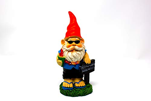 Garden Gnome It's 5 O'clock Somewhere (5 Oclock Somewhere Garden)