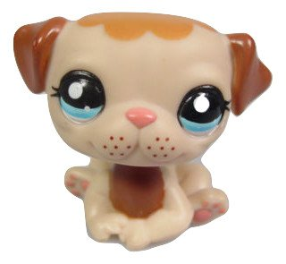 Authentic Littlest Pet Shop Puppy Dog Tan & Brown Pug Freckles with Blue Eyes #1753 Replacement Part LOOSE/Packaged in Parts Bag ()