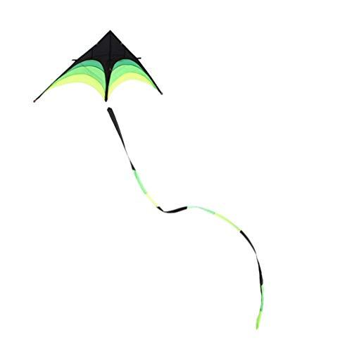 B&MF Triangle Kites, Long Tail Yi Fei Large Adult Kite Outdoor Kites Creative Park Kites Travel Kites, 100 200cm