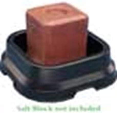 FORTEX INDUSTRIES 12 SBP-10 F/50# Salt Block Pan