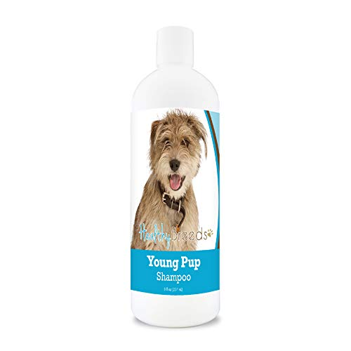 Healthy Breeds Young Puppy Soap-Free, Detergent-free, Tear-less, Baby Powder Scent Shampoo 8oz