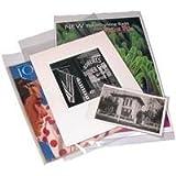 Print File 4 mil Polyethylene Storage Bag with 2'' Flap, 13x19''-100 Bags