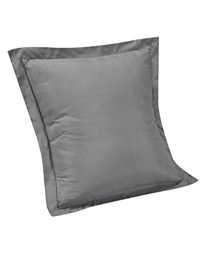 Brielle Solid Euro Sham, Light Grey ()
