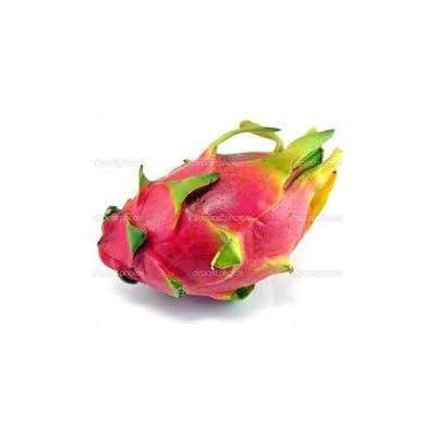 Fresh Dragon Fruit (Set of 2): Grocery & Gourmet Food