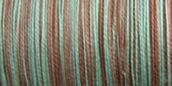 Sulky 713-4131 12-Weight Cotton Blendable Thread, 330-Yard, Chocolate Mint