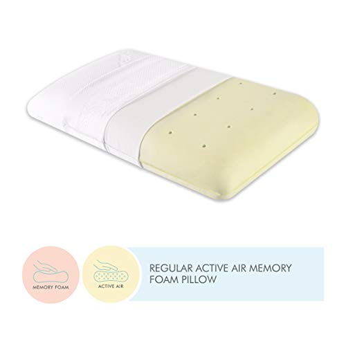 The White Willow Orthopedic Memory Foam Cooling Active Air Queen Size Neck & Back Support Sleeping Bed Pillow With Removable Zipper Cover (24\