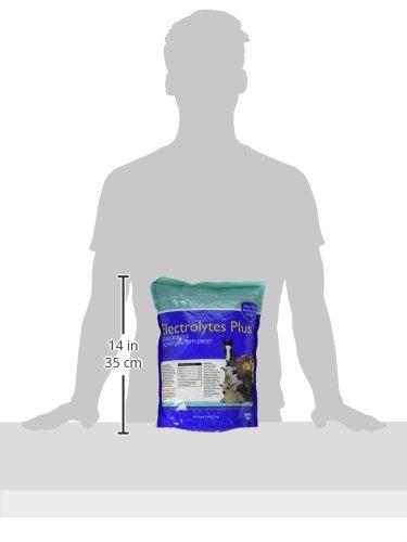 Milk & Co. 633132 Electrolytes Plus Multi-Species Supplement, 6 lb by Milk & Co. (Image #3)