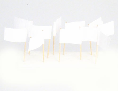 Flags Georgia White Flag Toothpicks product image