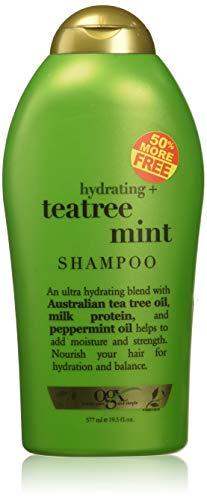 (OGX) Organix Shampoo Tea Tree Mint 19.5oz Bonus Hydrating