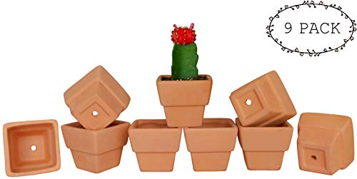 My Urban Crafts 3'' Small Mini Square Terra Cotta Clay Pots - Ceramic Pottery Planters - Cactus, Succulents, Flower Garden Pot with Drainage Hole - Great for Plants, Crafts, Wedding Favors (Set of 9) by My Urban Crafts