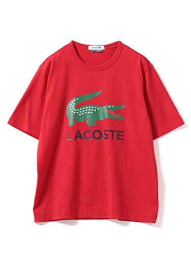 (빔스 보이)BEAMS BOY/T셔츠 LACOSTE/다른 주 로고 프린트 T셔츠 레이디스
