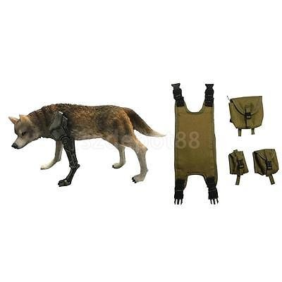 1/6th Wolf of War Model Statue with Chest Hang Bags for 12'' Action Figure by uptogethertek