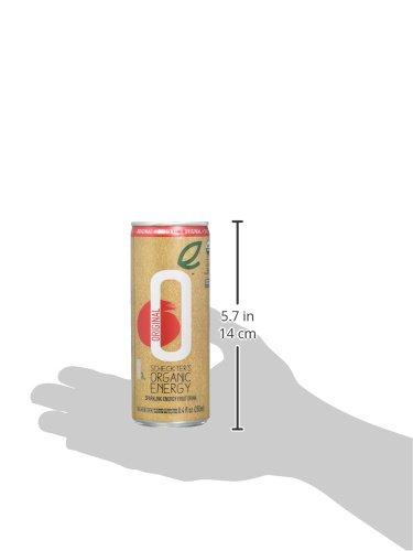 Scheckter's Organic Energy Drink, Regular, 8.4 Ounce (Pack of 12)