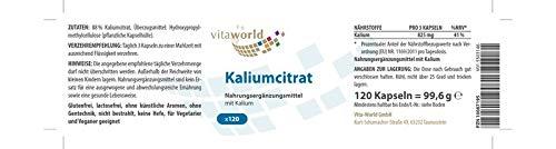 Citrato de Potasio 825mg dosis diaria 120 Cápsulas Vegetales - Vita World Farmacia Alemania: Amazon.es: Salud y cuidado personal