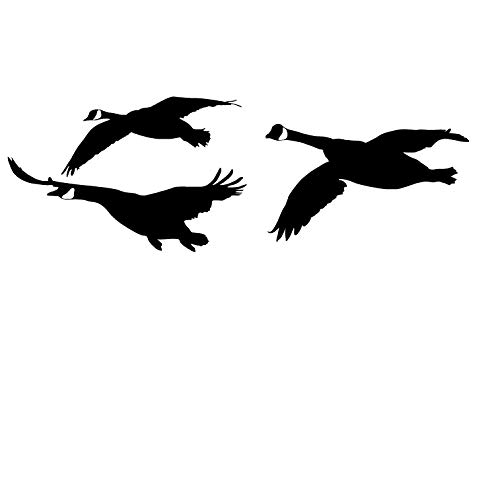 Waterfowl Decals Goose Honkers Flyin - Geese Flying in Decal- 2050 (Small, White)
