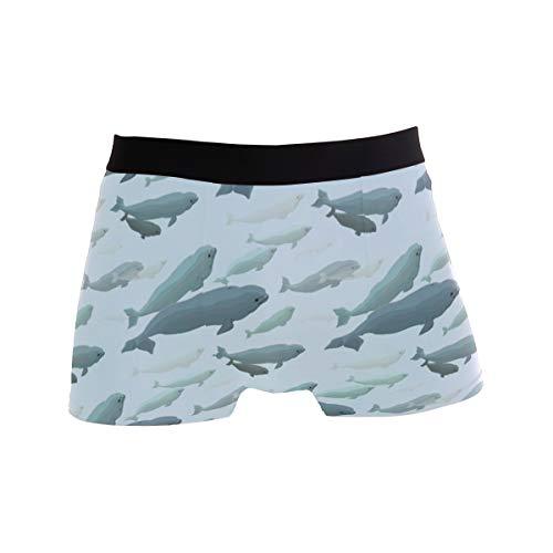Mens Boxer Briefs,Beluga Whale, Soft Breathable Stretch Low Rise Trunks Briefs Underwear Men Boys