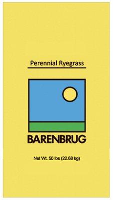BARENBRUG USA 491164 50 lb Peren Ryegrass Seed by Barenbrug