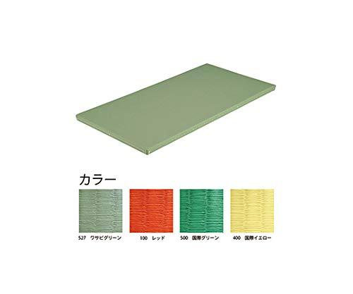 エバニュー 柔道用畳ソフトすべり止付 関東間 レッド EKR0051-100