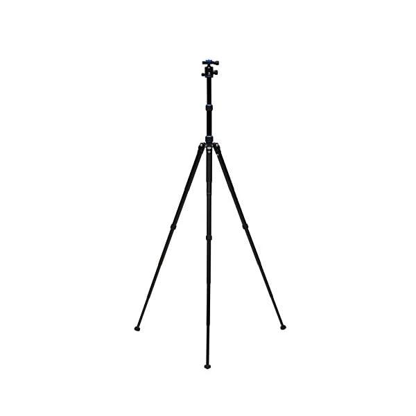 RetinaPix Benro Pro Angel 2 Series Camera Tripod Kit with B1 Ballhead