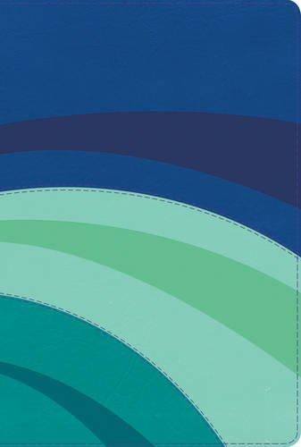 rvr-1960-biblia-de-estudio-arco-iris-azul-elctricocelesteturquesa-smil-piel-spanish-edition