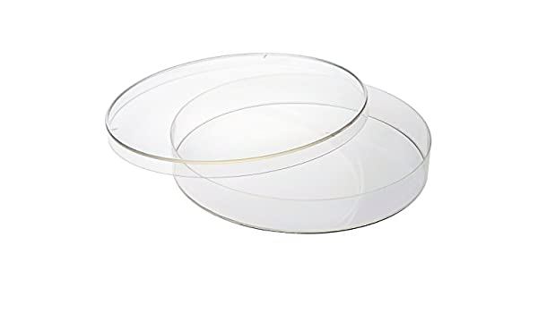 22 mm Height 150 mm x 20 mm CELLTREAT 229655 Polystyrene Petri Dish 5//Bag Sterile Non-Vented Lid Pack of 100