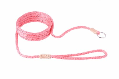 Alvalley Nylon Slip Lead for Dogs 6mm X 6ft, My Pet Supplies