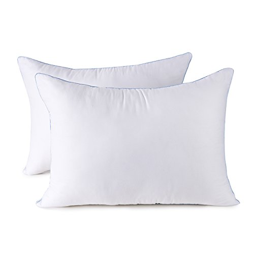 HOMESJUN Set of Two, Fluffy Down Alternative Bed Pillow Hypo-Allergenic 100% Cotton, White, 20x28 by HOMESJUN