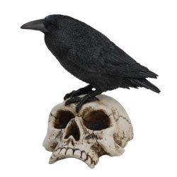 Raven on Skull Collectible Bird Crow Skeleton Figurine Statue Model (Bird Skull)