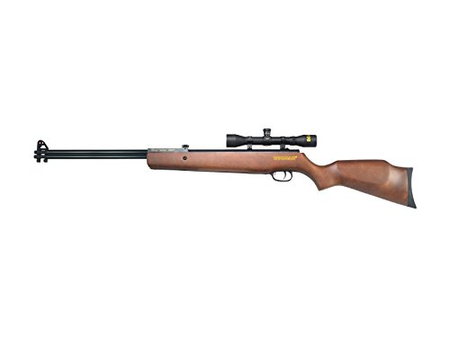 Beeman Sportsman Double Barrel 2016W Dual Caliber Air Rifle Como with 4x32x (Double Barrel Rifles)