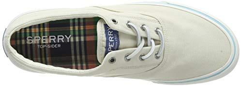 Sperry Men's Striper II CVO Kick Back sneaker, Off White, 10.5 M